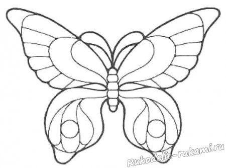Эскиз бабочки 1