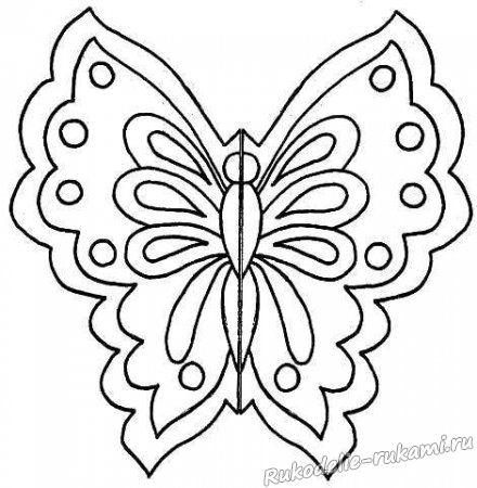 Эскиз бабочки 2